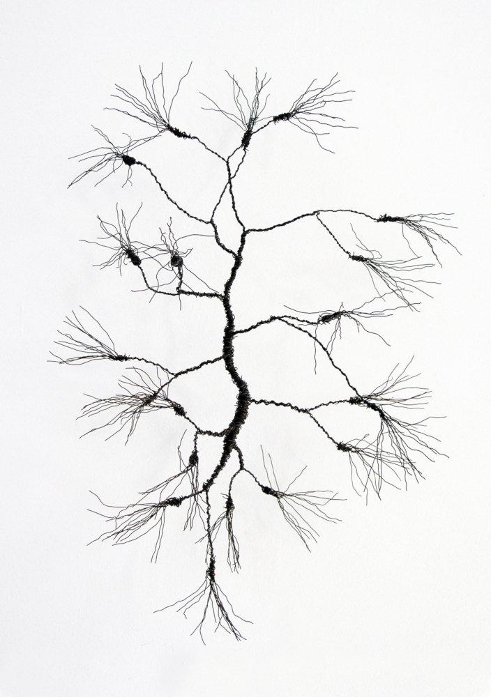 Drahtbüschel5-cm-1