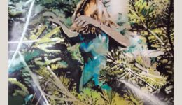 Katja Grandpierre   In the Branches   Acryl, Öl auf Leinwand   60 x 100 cm   2020
